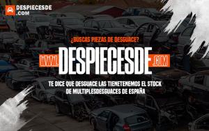 despiecesde5